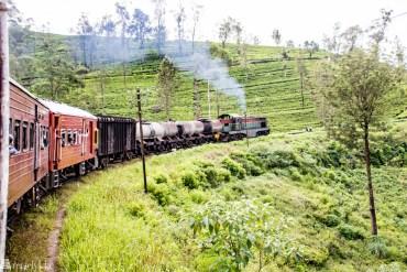 Train trip through tea country in Sri Lanka