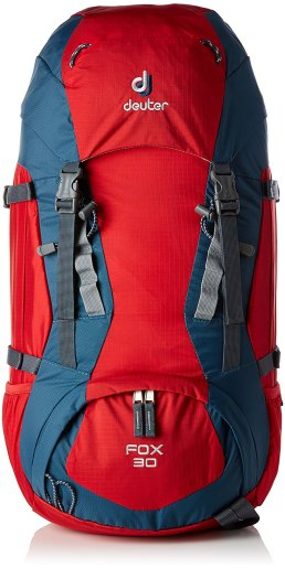 Deuter Fox 30 - Travel Foodie Mom.jpg