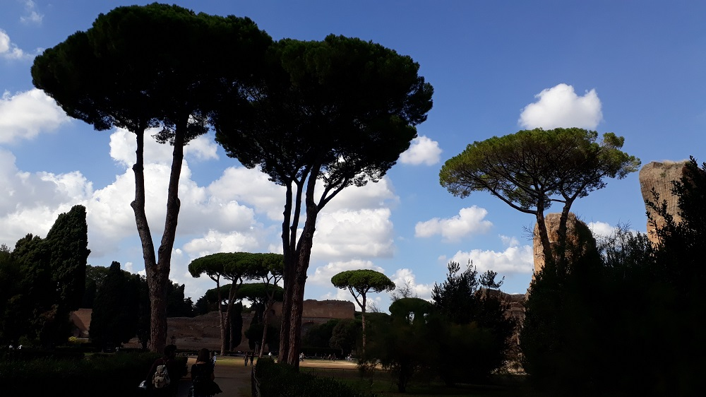 The gardens of the Baths of Caracalla