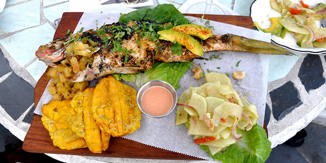 Snapper with papaya salad and tostones are some typical Dominican foods in Punta Cana