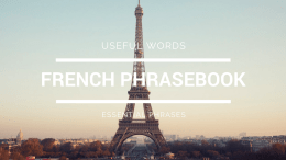 basic french phrases for travel
