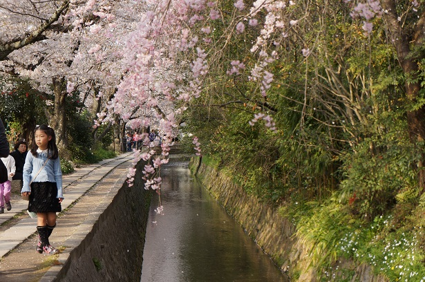 kyoto must see (2)