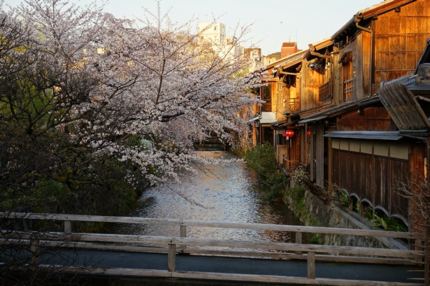 what to see kyoto (1)