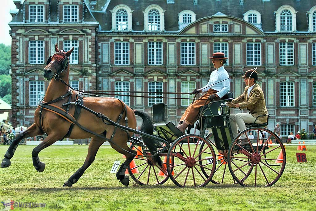 Horse and buggy race at the Chateau (Castle) of Cany-Barville