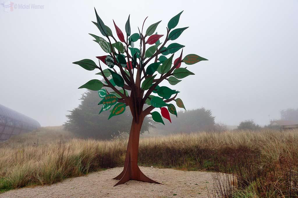 Liberty Tree at Utah Beach in Normandy