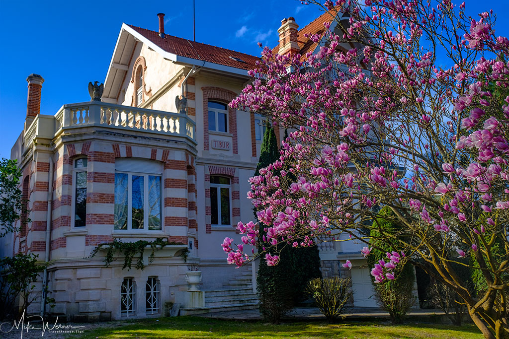 One of many villas in the Winter City of Arcachon