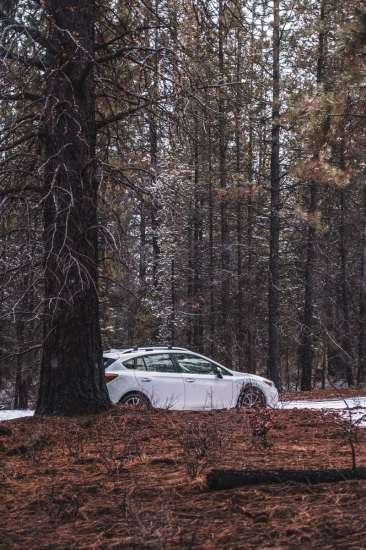 Our fully-loaded 2017 Impreza in the woods