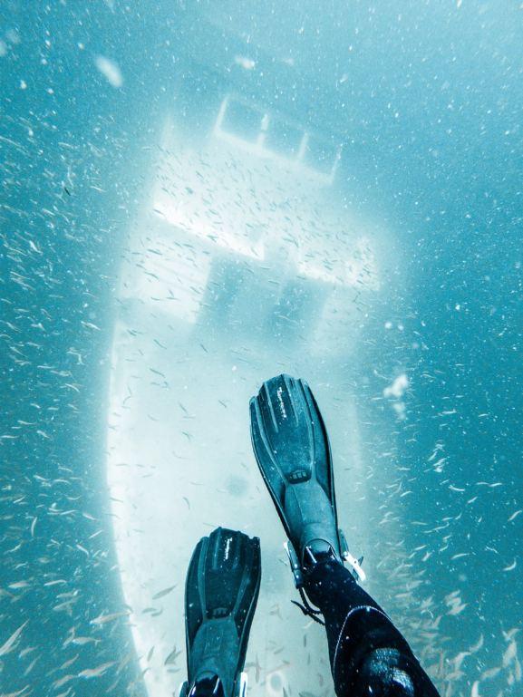 pcb-diving-pov