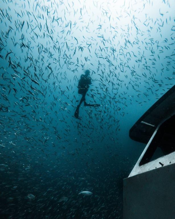 pcb-diving