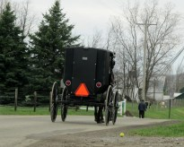 Buggies frequent the road as often as automobiles in Holmes County, Ohio