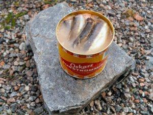 12-Surströmming