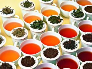 4-tea-tasting