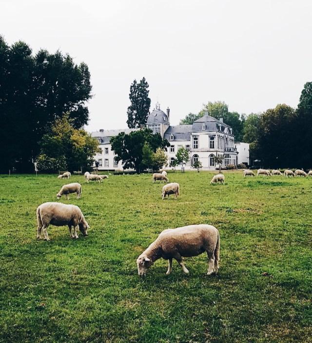 Slapen in Maastricht? Heerlijk overnachten bij Buitenplaats Vaeshartelt!