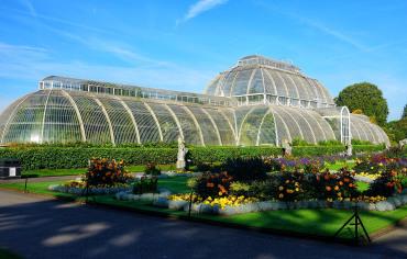 Real Jardín Botánico y el Palacio de Kew TGT