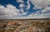 Senetti Plateau, Bale Mountains National Park, Ethiopia