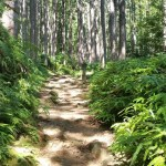 Giappone, Kumano Kodo: onsen o non onsen