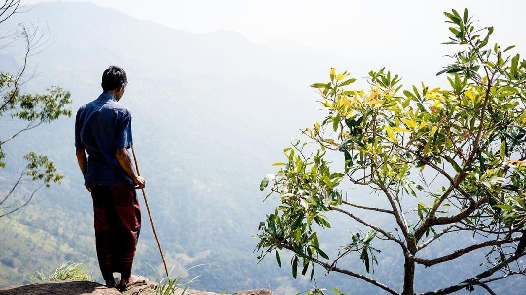 , 7 Highlights in Sri Lanka, Travelguide.at
