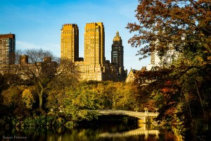 Best ways to take photos of Central Park in New York