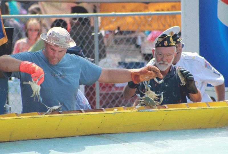 Hard Crab Derby
