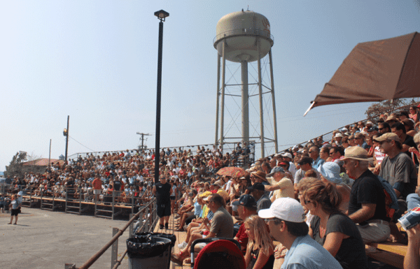 Crowd at the Crab Derby
