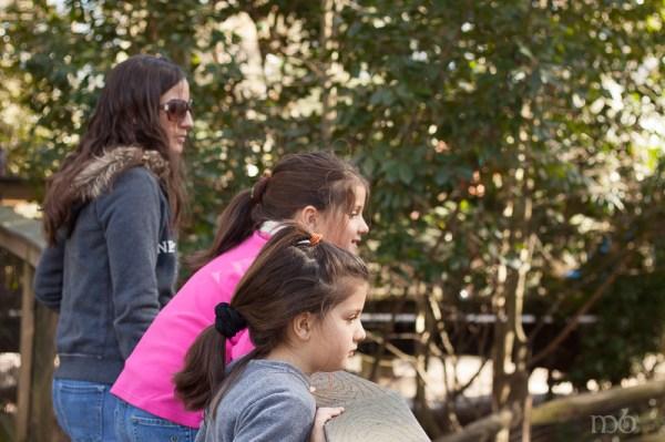 kids at the Salisbury Zoo
