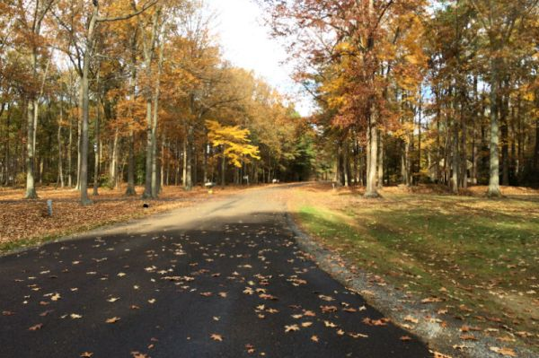 Mt Misery Road