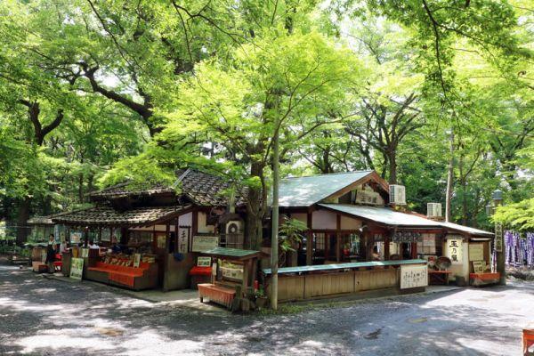 tamanoya soba/jindaiji temple