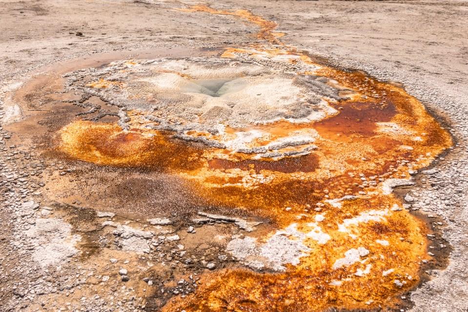 Yellowstone in April Upper Geyser Basin Tardy Geyser