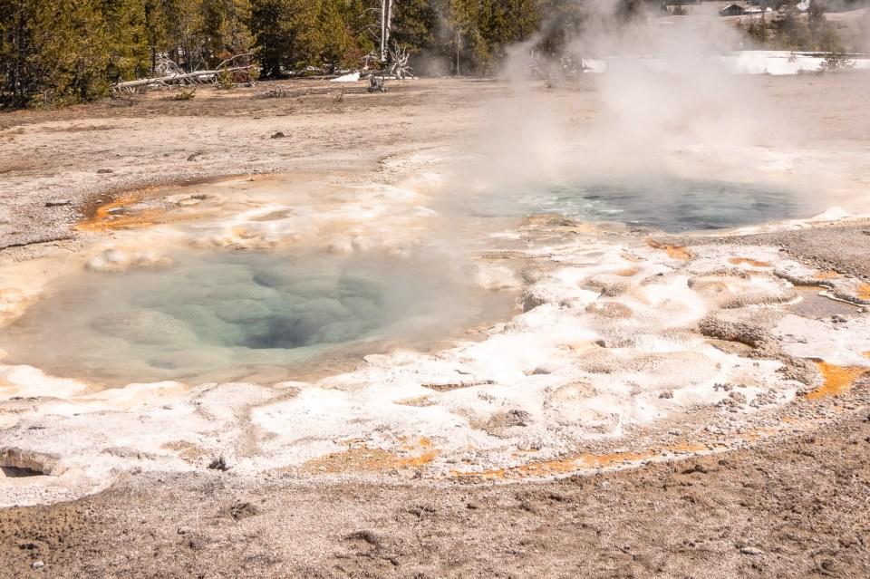 Yellowstone in April Upper Geyser Basin Spasmodic Geyser