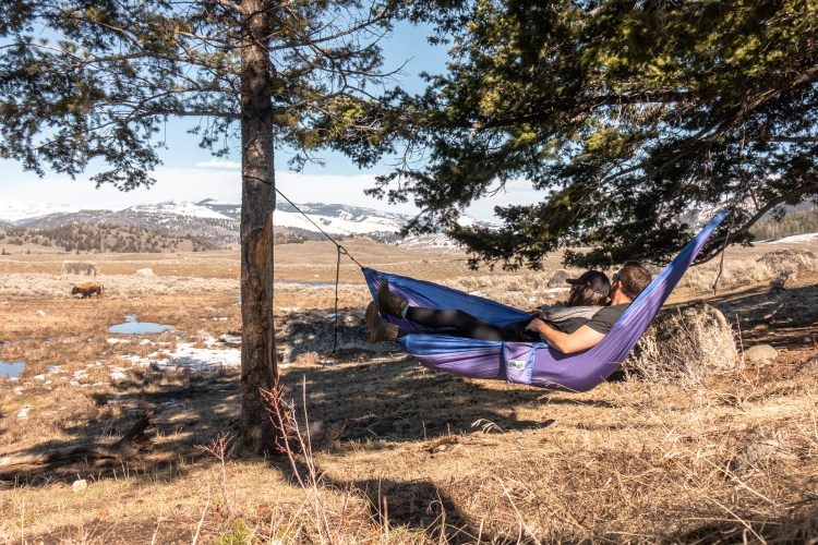 Yellowstone in April Hammock Break
