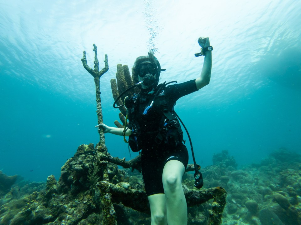 Scuba diving in Curaçao, Neptune's Reef