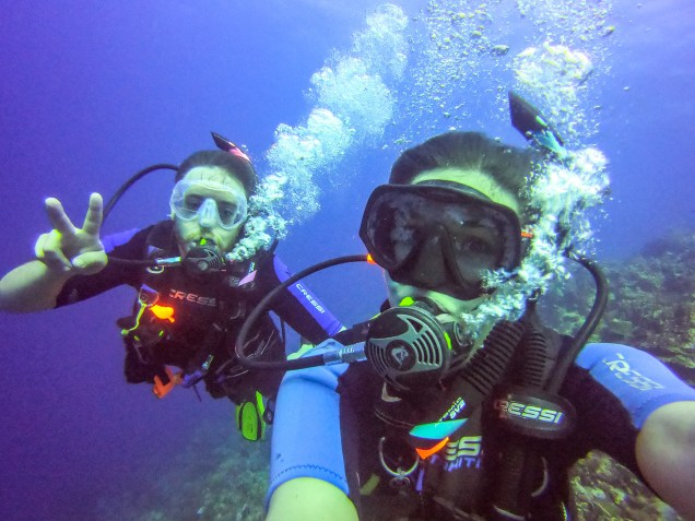 Scuba Diving in Curacao Black Coral Garden