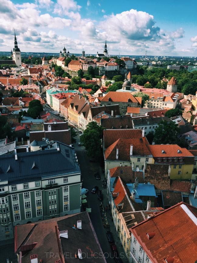 vista di Tallinn dalla torre di Sant'Olaf