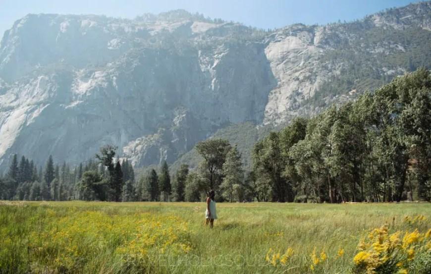 parco Yosemite california usa