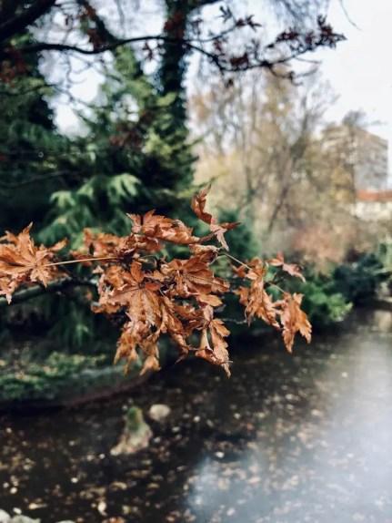 Inverno a Budapest
