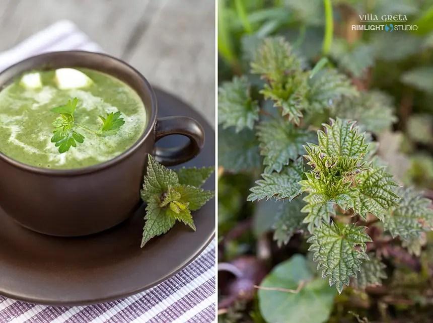 zupa-z-pokrzyw