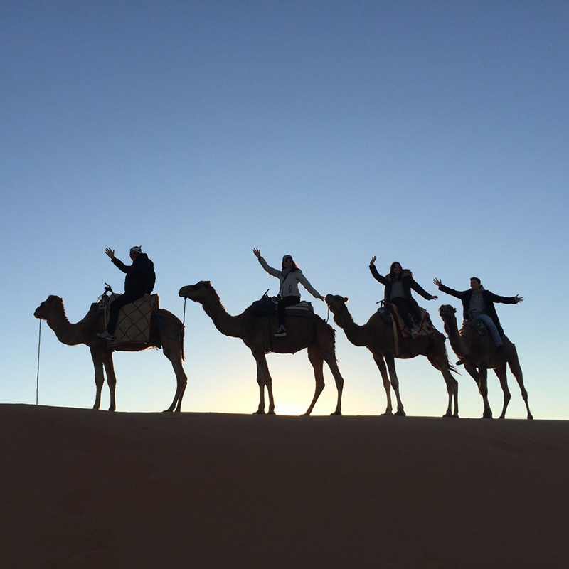 People riding camels in the desert of Morocco