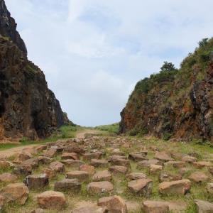 新北瑞芳|金瓜石地質公園本山礦場:神奇的魔法石頭陣!IG熱搜打卡景點 - 輕旅行