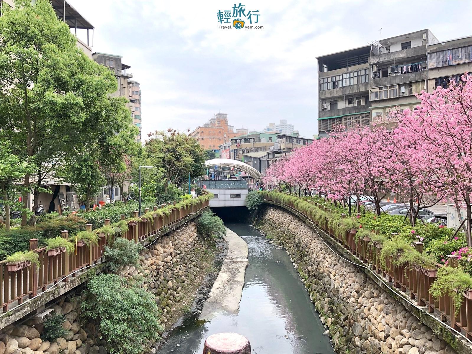 【新北-土城區】土城人的私房賞櫻景點『希望之河』 - 輕旅行