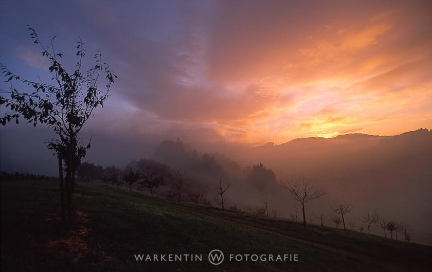 Schwarzwald – Mildes Klima und wilde Schluchten