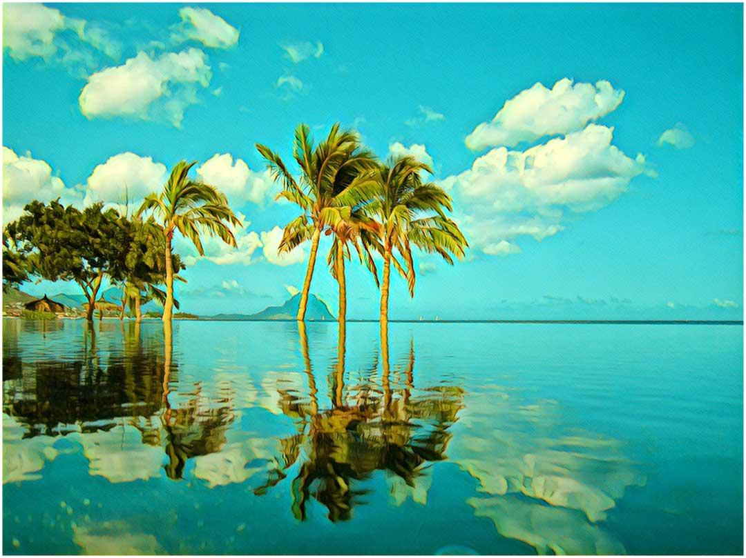 Skrydžiai į Kaimanų salas