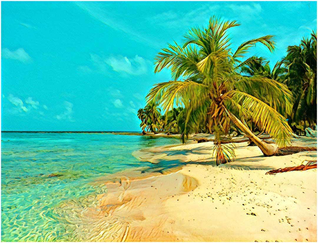 Riga Martinique Caribbean