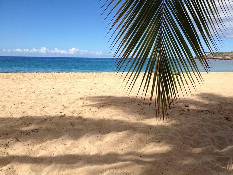 hulopoe beach lanai