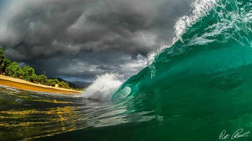 Maui Financial Breakdown