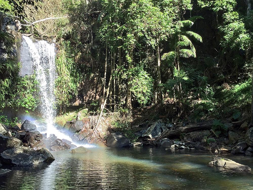 waterfalls gold coast hinterland