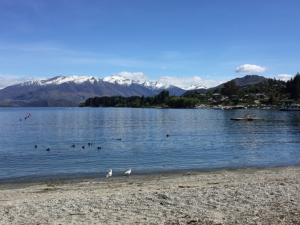 walks around lake hawea