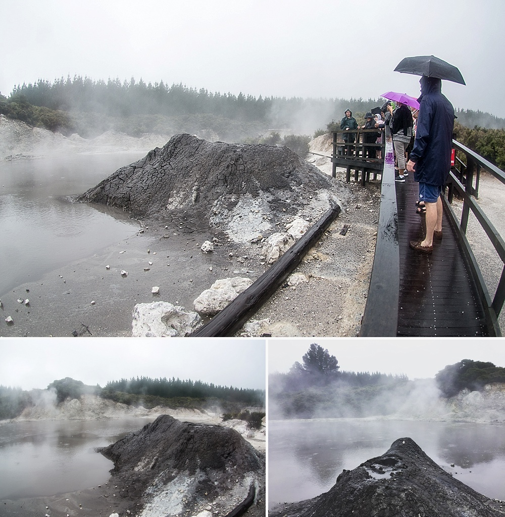 mud volcano hells gate new zealand