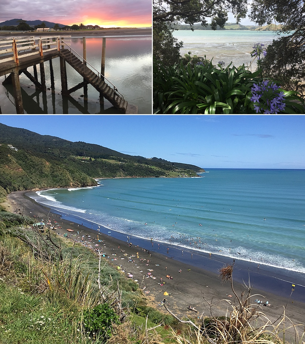 where to live north island new zealand