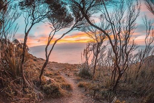 E Noho Ra, New Zealand