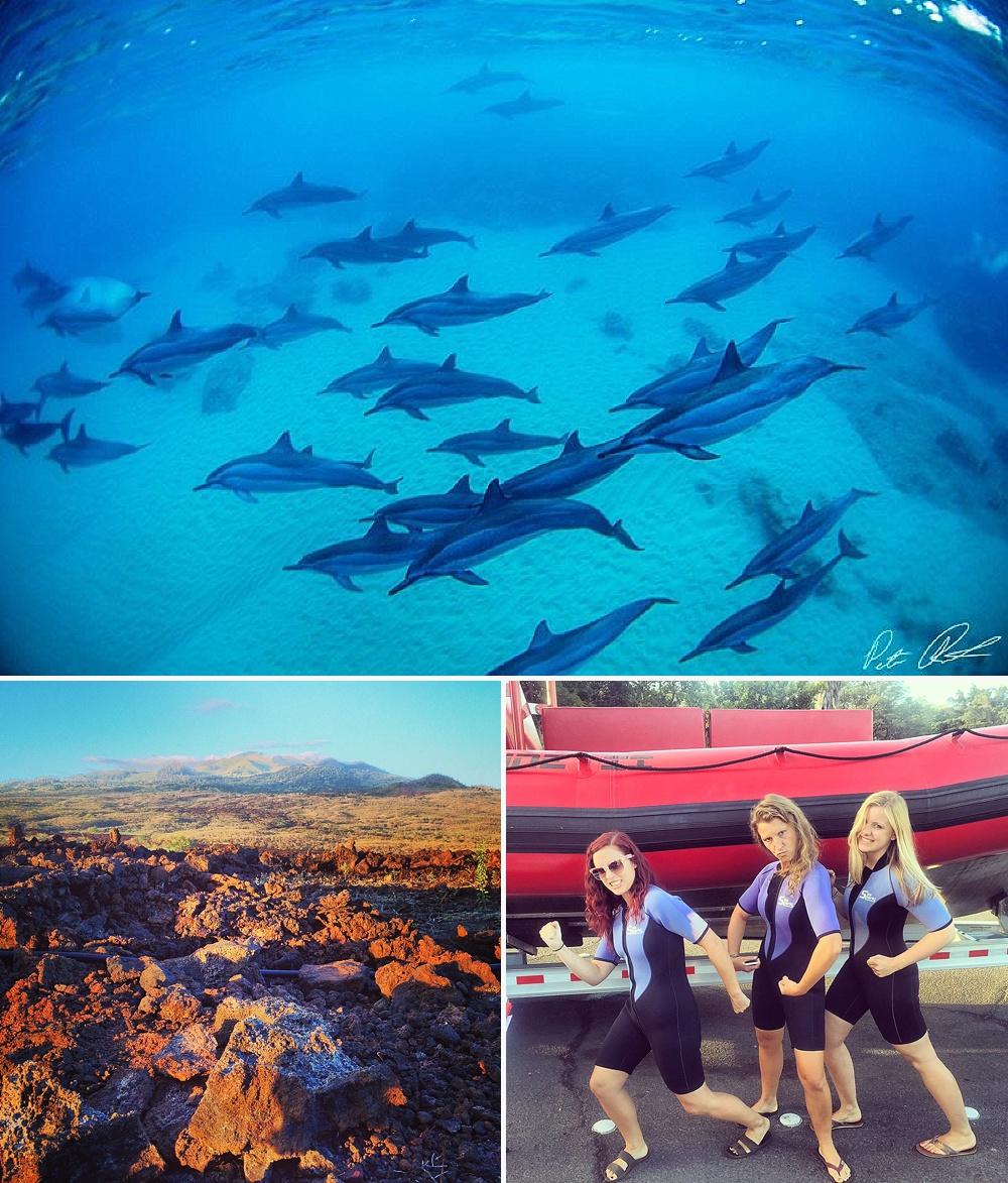 maui snorkeling tours forbidden coast